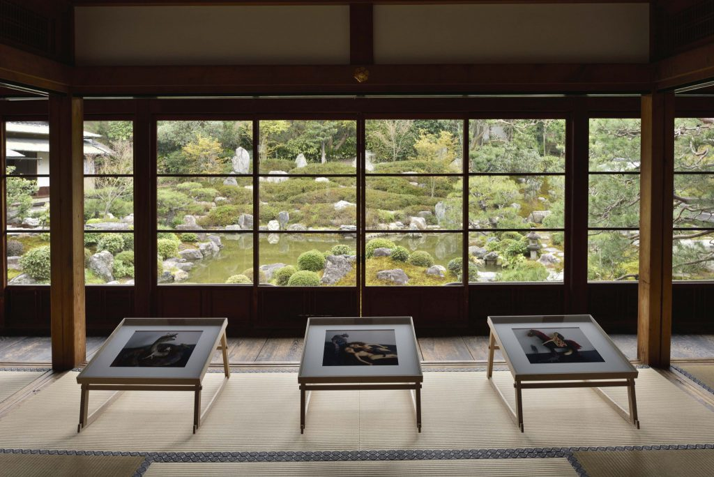 荒木経惟展 / 両足院(建仁寺内) (Copyright:Takuya Oshima/KYOTOGRAPHIE2017)